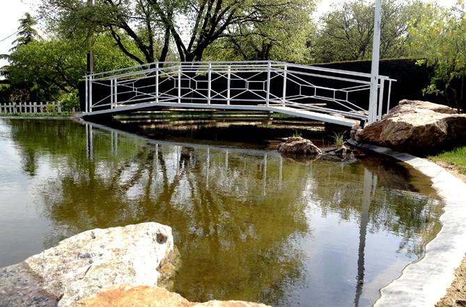 bassin1-4.jpg