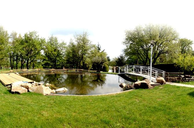 bassin1-5.jpg